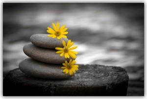 Estrés y equilibrio